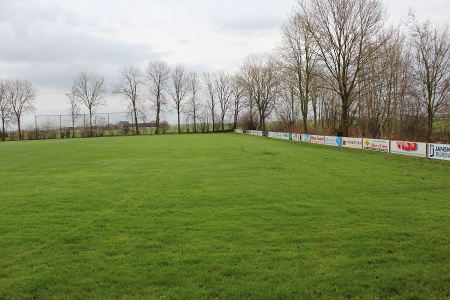 Afbeelding sportveld Reitsum